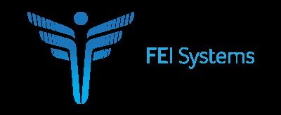 FEI Systems Logo